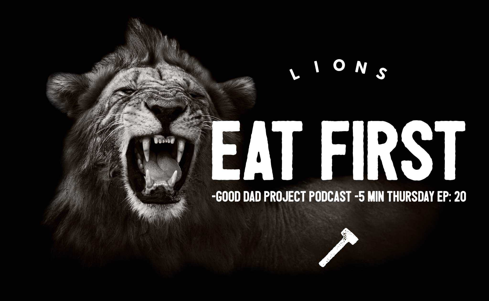 lions eat first