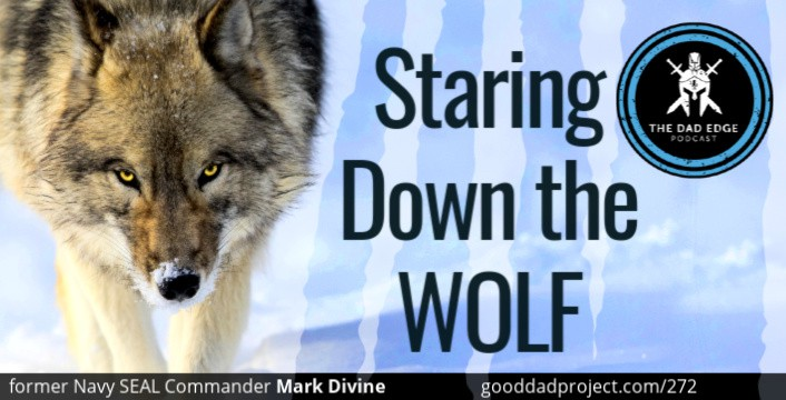 staring down the wolf leadership